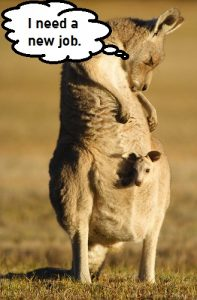Australia, how we love your kangaroos